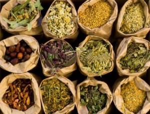 medicinal-herbs-300x229