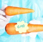 Monsanto Launches Massive Campaign to Stop GMO Labeling