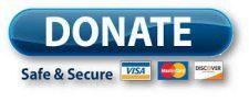 PayPal internal button 2 e1628561179917