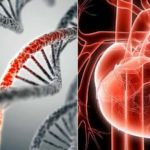 Dr. Charles Hoffe: MRNA Vaccines 'Will Kill Most People' Through Heart Failure & 62% Already Have Microscopic Blood Clots
